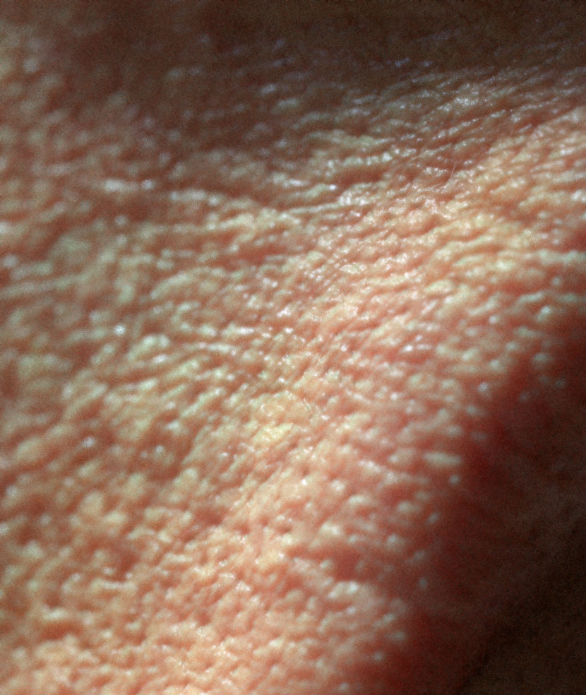 Close-Up of rendered skin